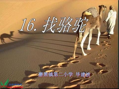 《花钟》和《找骆驼》
