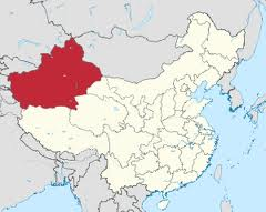 新疆农二师跨越式课题指导简报